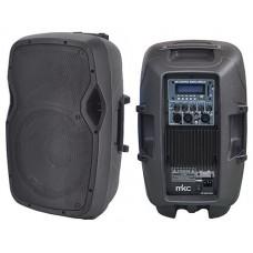 CASSA AMPLIFICATA 200W CON LETTORE MP3 FM E BLUETOOTH