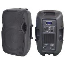 CASSA AMPLIFICATA 300W CON LETTORE MP3 FM E BLUETOOTH